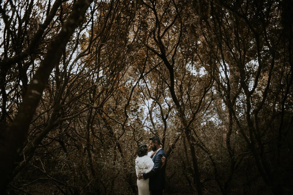 boda en el bosque, miguel marquez